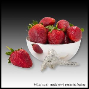 silver snack bowl pangolin
