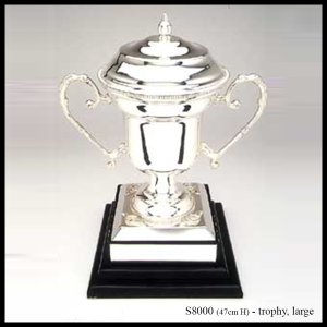 S8000 silver trophy large