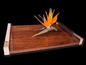 New copper trays