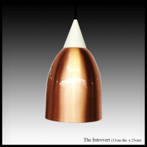 The Introvert copper pendant lamp shade